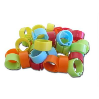 Snap-on Chicken Rings 40 Pack Asstd Colours