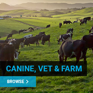 Veterinary Supplies Online